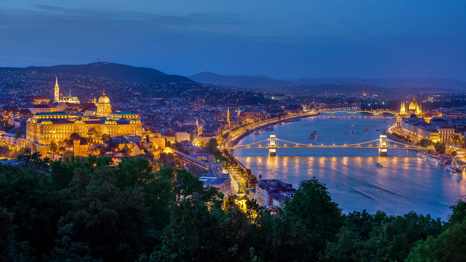 Buda Castle and Chain Bridge panorama from Gellert hill in the blue hour