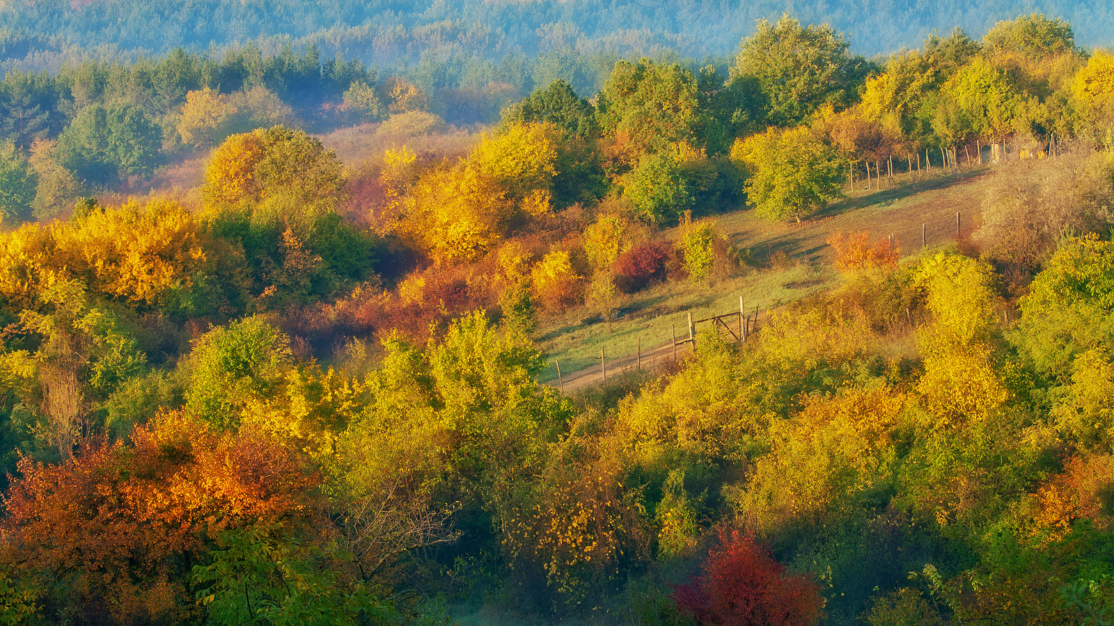 Colorful autumn landscape near Vác