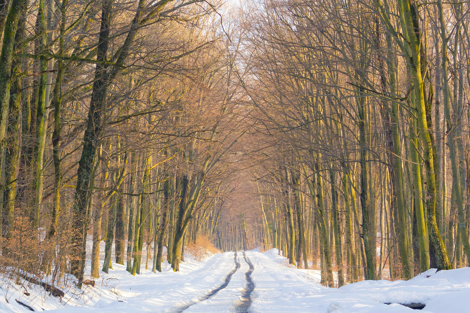Snowy winding road near Vétyem