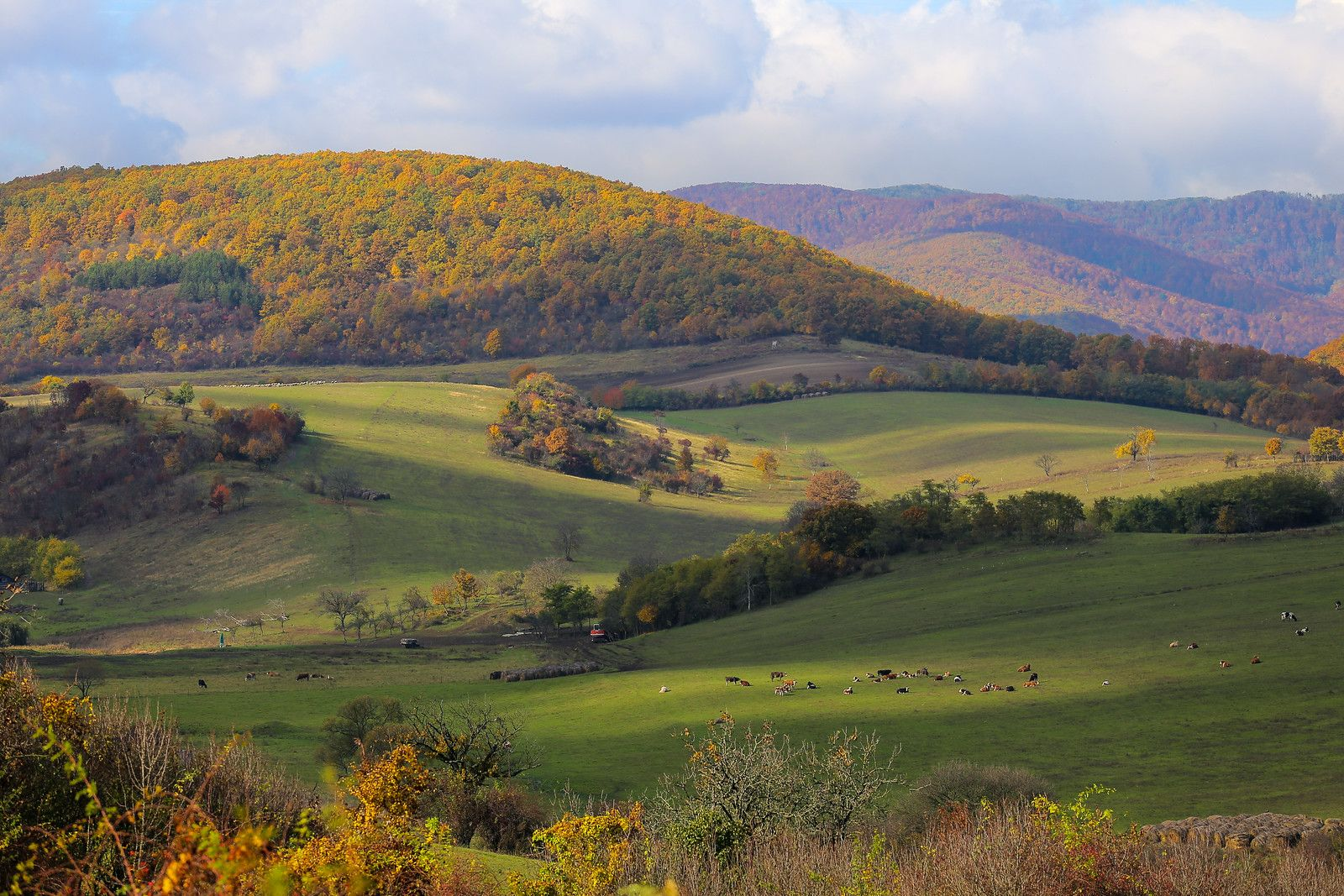 Hills near Szokolya, Pest county