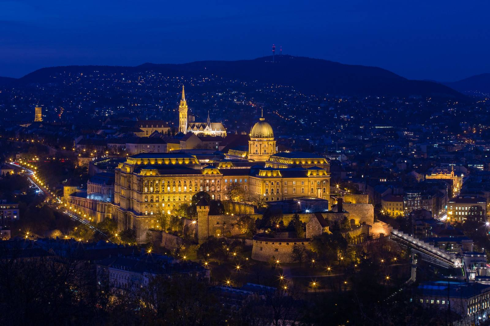 Buda Castle from Citadel in the Blue Hour